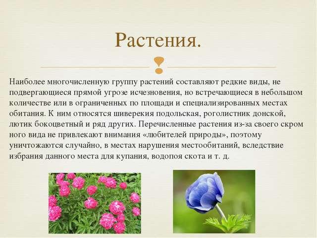 Наиболее многочисленную группу растений составляют редкие виды, не подвергающ...