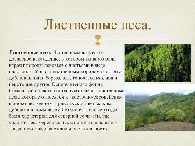 Лиственные леса.Лиственным называют древесное насаждение, в котором главную...