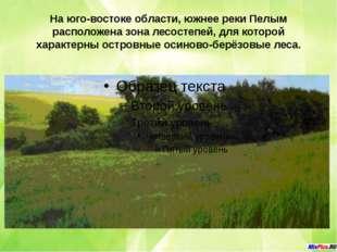 На юго-востоке области, южнее реки Пелым расположена зона лесостепей, для кот
