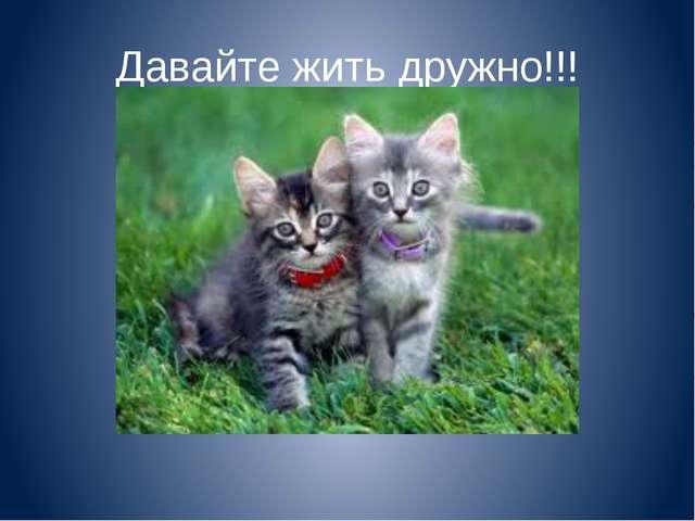 Давайте жить дружно!!!