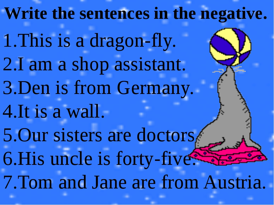 Write the sentences in the negative. This is a dragon-fly. I am a shop assist...