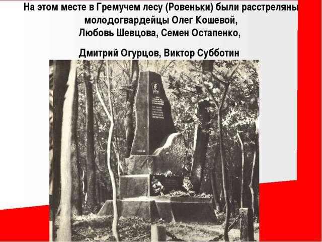 На этом месте в Гремучем лесу (Ровеньки) были расстреляны молодогвардейцы Оле...
