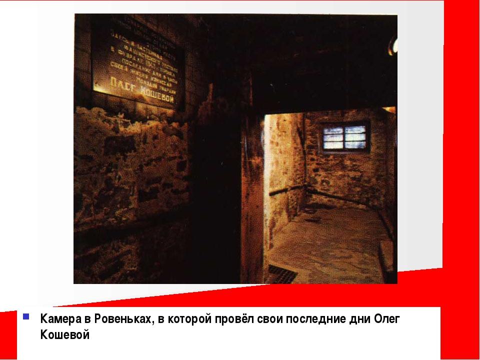 Камера в Ровеньках, в которой провёл свои последние дни Олег Кошевой