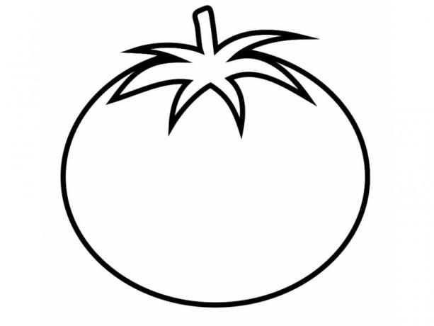 C:\Users\1\Documents\вкр Кулямсаровой А 46 гр\сборник упр\к сборнику\1387113527_tomato.jpg