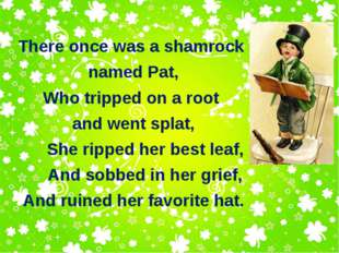 There once was a shamrock named Pat, Who tripped on a root and went splat, Sh
