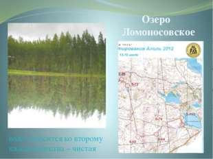 Озеро Ломоносовское вода относится ко второму классу качества – чистая Это оз