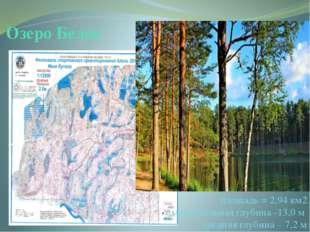 Озеро Белое площадь = 2,94 км2 максимальная глубина -13,0 м средняя глубина –