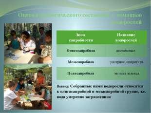 Оценка экологического состояния с помощью водорослей Зона сапробности Названи