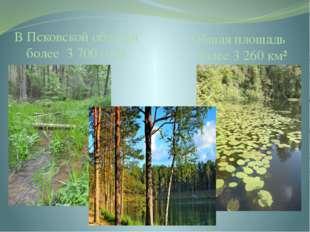 В Псковской области более 3 700 озёр Общая площадь более 3 260 км² Псковская