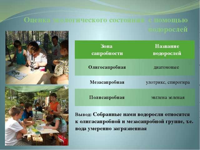 Оценка экологического состояния с помощью водорослей Зона сапробности Названи...