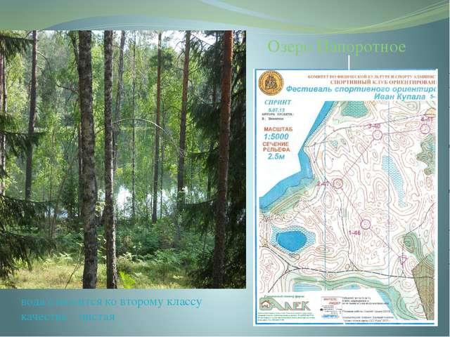 вода относится ко второму классу качества – чистая Озеро Папоротное Озеро Пап...