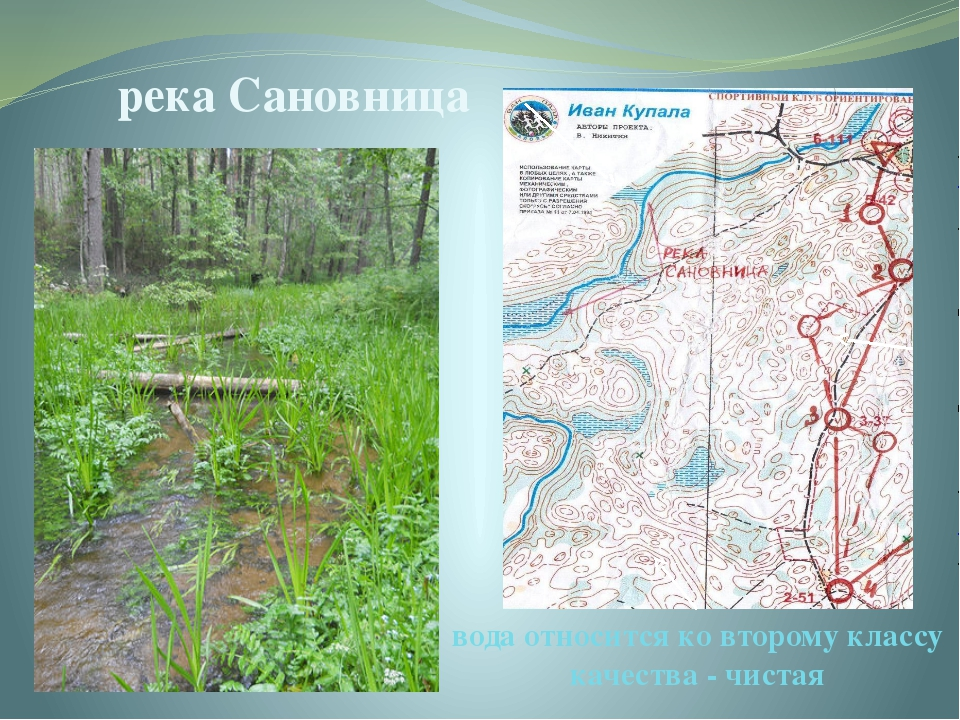 река Сановница вода относится ко второму классу качества - чистая Река Сановн...