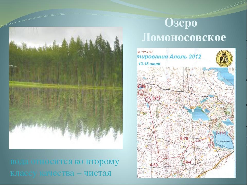 Озеро Ломоносовское вода относится ко второму классу качества – чистая Это оз...