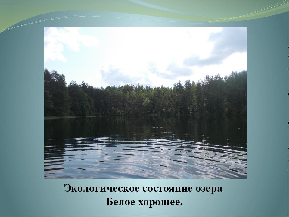 Экологическое состояние озера Белое хорошее.