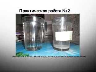 Мы налили в два стакана воды, в один добавили и размешали соль. Практическая