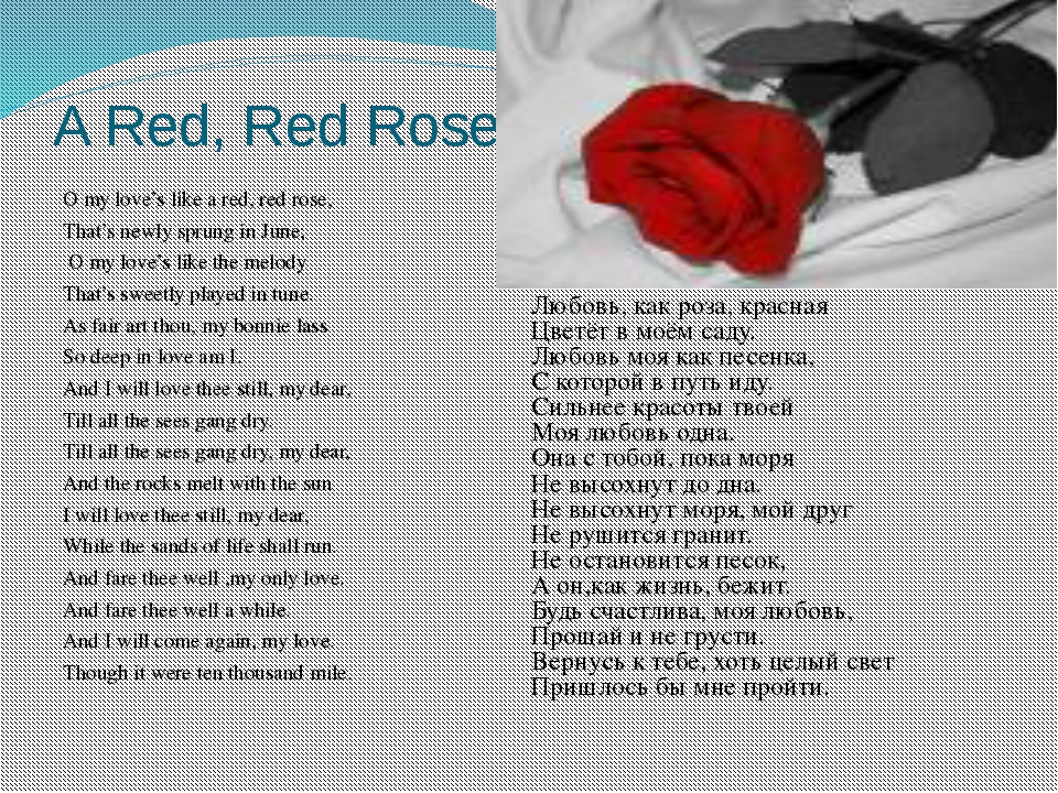 A Red, Red Rose O my love's like a red, red rose, That's newly sprung in June...