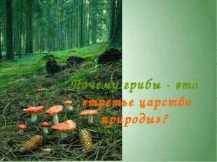 На кого похожи грибы? Грибы - это отдельное царство живой природы. Они не пох
