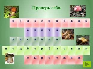 Тема. Тайны грибного царства План урока. С кем дружат грибы? Какое строение и