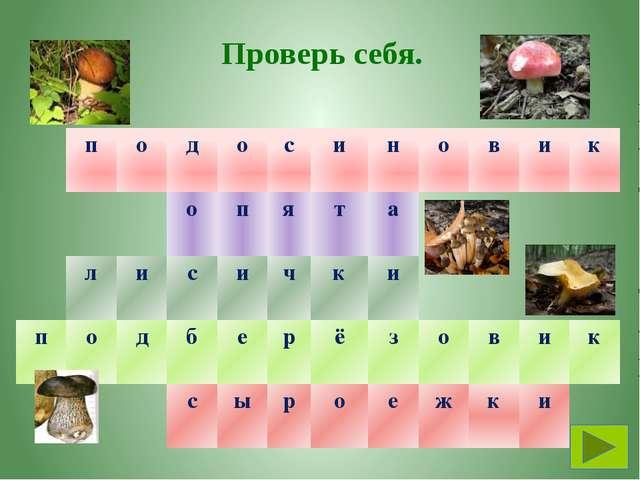 Тема. Тайны грибного царства План урока. С кем дружат грибы? Какое строение и...