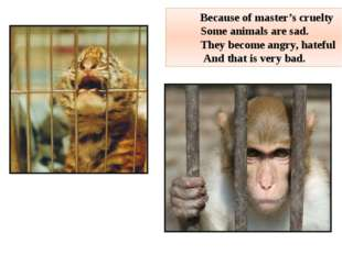 Because of master's cruelty Some animals are sad. They become angry, hateful