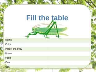 Task Fill the table Name Color Partof the body Home Food Can Use