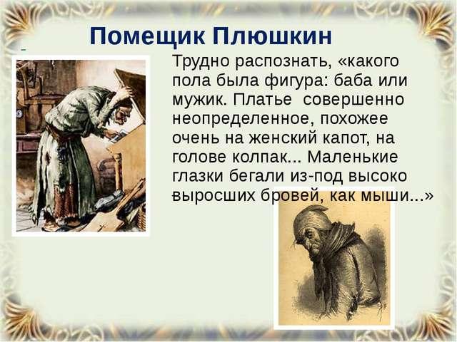 Помещик Плюшкин Трудно распознать, «какого пола была фигура: баба или мужик....
