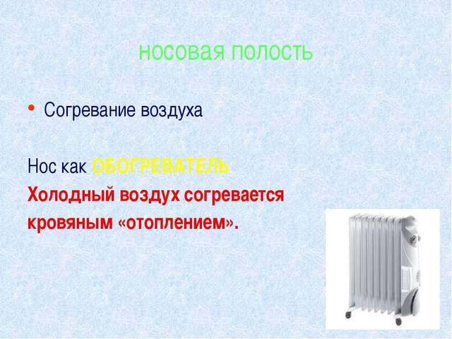 носовая полость Согревание воздуха Нос как ОБОГРЕВАТЕЛЬ: Холодный воздух согр...