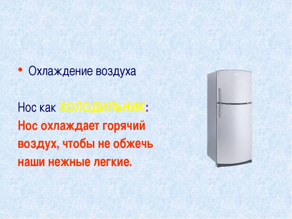 Охлаждение воздуха Нос как ХОЛОДИЛЬНИК: Нос охлаждает горячий воздух, чтобы н...