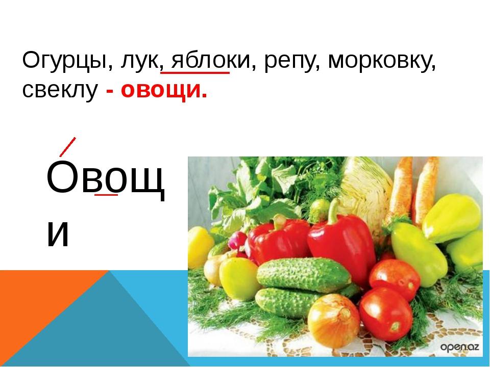 Огурцы, лук, яблоки, репу, морковку, свеклу - овощи. Овощи