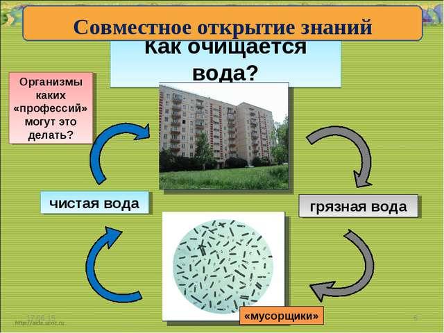 Как очищается вода? * * грязная вода чистая вода Организмы каких «профессий»...