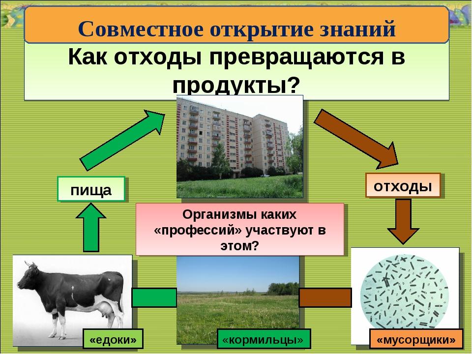 Как отходы превращаются в продукты? * * отходы пища Организмы каких «професси...
