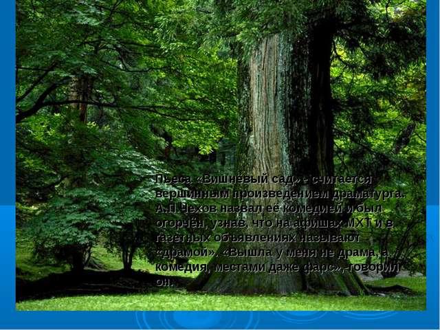 Пьеса «Вишнёвый сад» - считается вершинным произведением драматурга. А.П.Чехо...