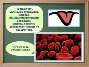 УВЕЛИЧЕНЫЙ УЧАСТОК ЯЗЫКА На языке есть маленькие пупырышки, которые называютс