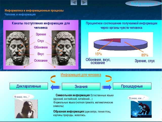 Информатика и информационные процессы Человек и информация Информатика 1.5 Пр...