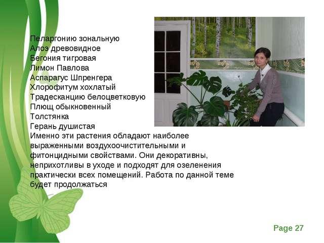 Пеларгонию зональную Алоэ древовидное Бегония тигровая Лимон Павлова Аспарагу...