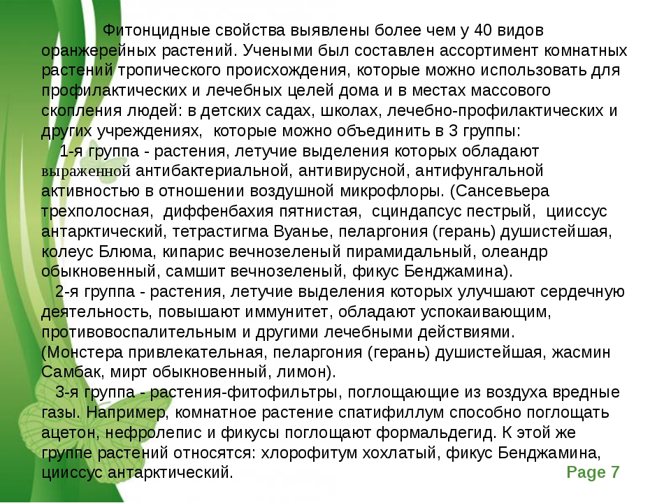 Фитонцидные свойства выявлены более чем у 40 видов оранжерейных растений. Уч...