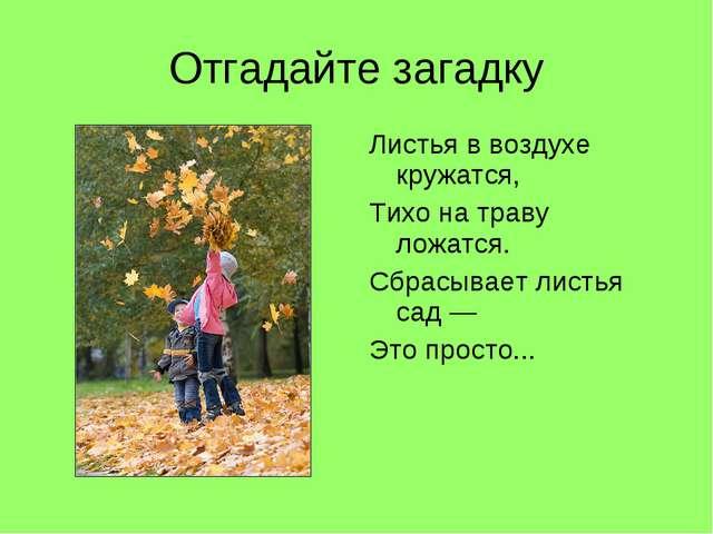 Отгадайте загадку Листья в воздухе кружатся, Тихо на траву ложатся. Сбрасывае...
