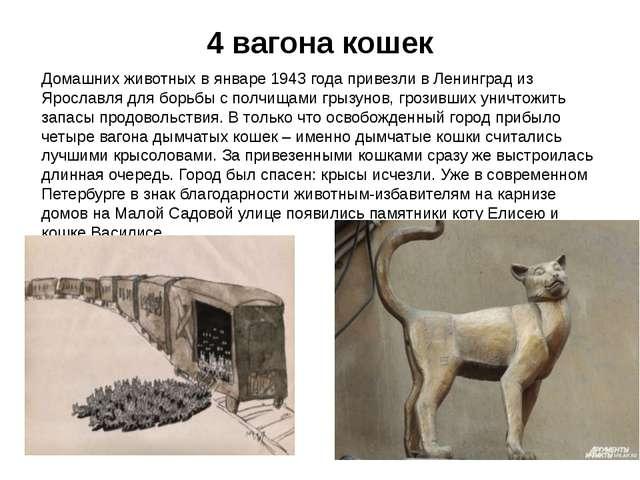 4 вагона кошек Домашних животных в январе 1943 года привезли в Ленинград из Я...