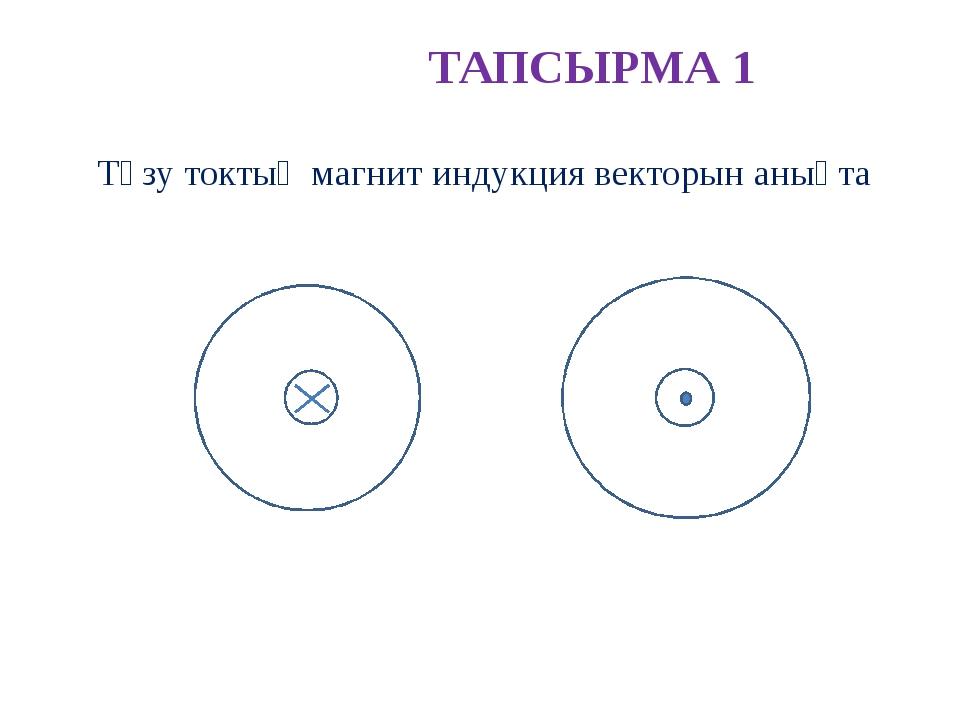 ТАПСЫРМА 1