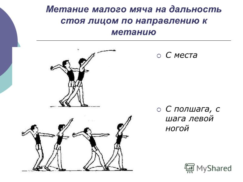 http://images.myshared.ru/110395/slide_5.jpg