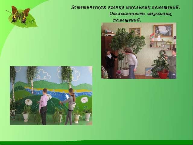 Эстетическая оценка школьных помещений. Озелененность школьных помещений.