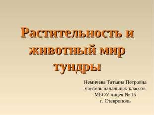 Растительность и животный мир тундры Немичева Татьяна Петровна учитель началь
