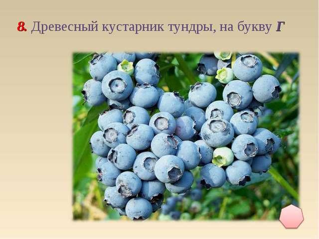 8. Древесный кустарник тундры, на букву Г