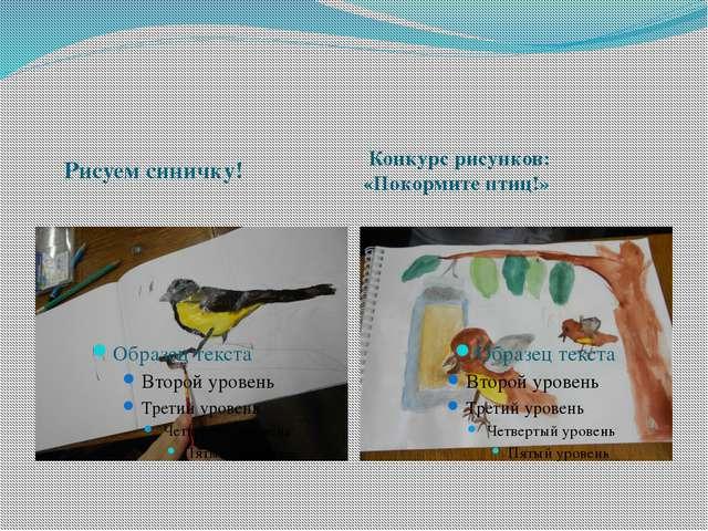 Рисуем синичку! Конкурс рисунков: «Покормите птиц!»