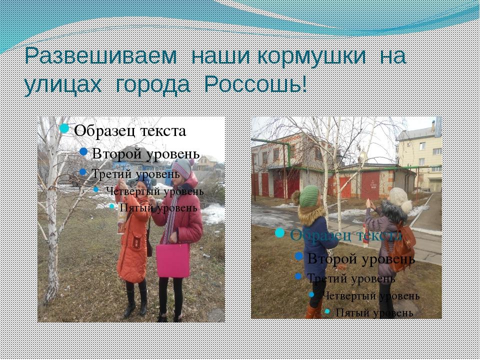 Развешиваем наши кормушки на улицах города Россошь!