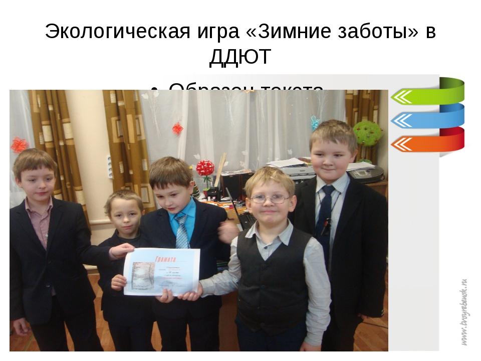 Экологическая игра «Зимние заботы» в ДДЮТ