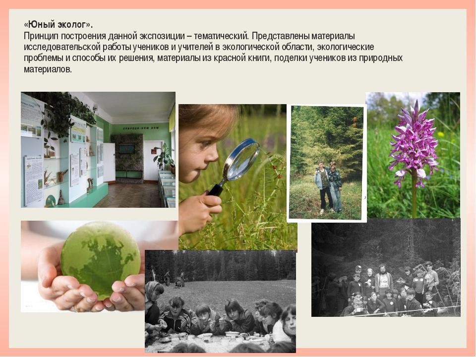 «Юный эколог». Принцип построения данной экспозиции – тематический. Представл...