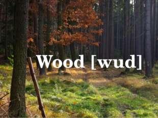 Wood [wud]