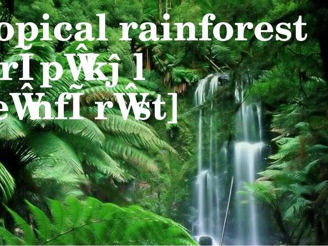 tropical rainforest [ˈtrɔpɪkəl ˈreɪnfɒrɪst]
