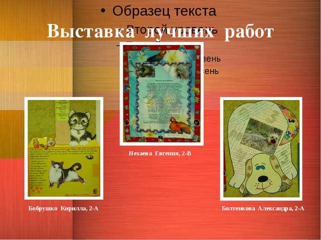 Выставка лучших работ Нехаева Евгения, 2-В Бобрушко Кирилла, 2-А Болтенкова А...